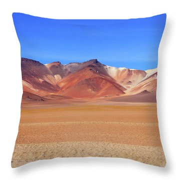 Throw Pillow featuring the photograph Bolivian Altiplano  by Aidan Moran