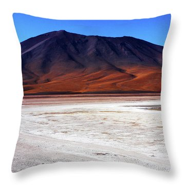 Throw Pillow featuring the photograph Bolivian Altiplano, South America by Aidan Moran