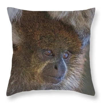 Bolivian Grey Titi Monkey Throw Pillow