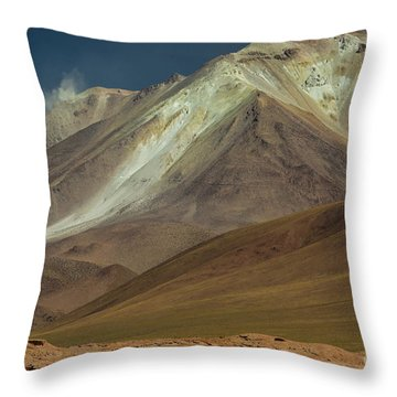 Bolivian Highland Throw Pillow by Gabor Pozsgai