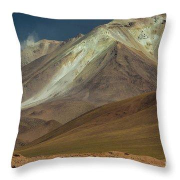 Bolivian Highland Throw Pillow