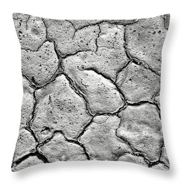 Throw Pillow featuring the photograph Bone Dry  by Olivier Le Queinec