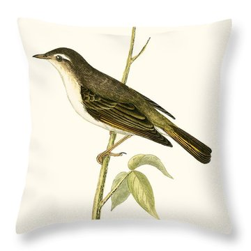 Bonelli's Warbler Throw Pillow by English School
