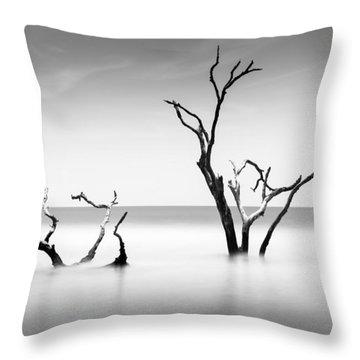 Boneyard Beach Viii Throw Pillow