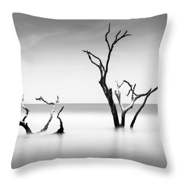 Boneyard Beach Viii Throw Pillow