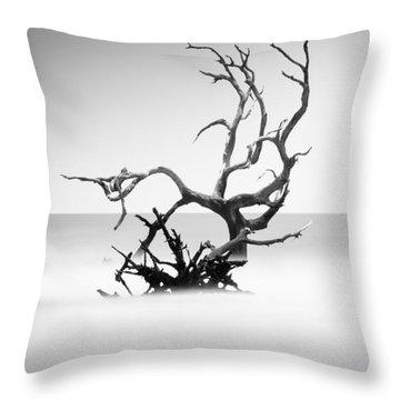 Long Island Throw Pillows