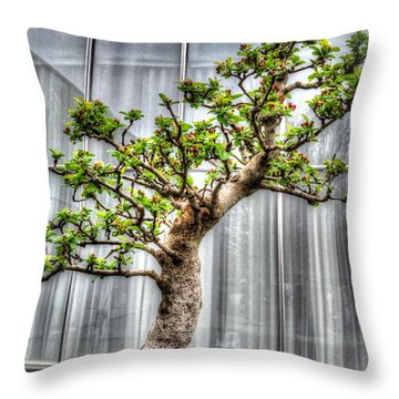 Bonsai Tree II Throw Pillow