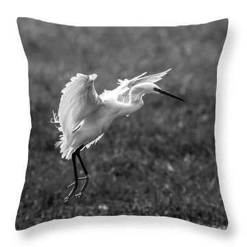Book_cover_snowy Egret Throw Pillow