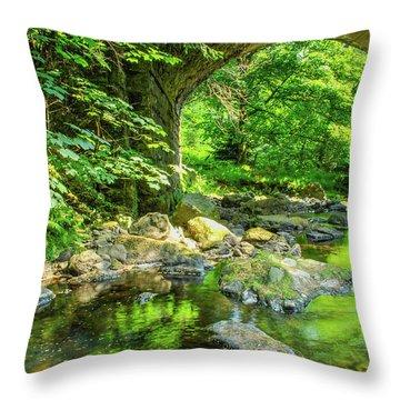 Boola Bridge  Throw Pillow