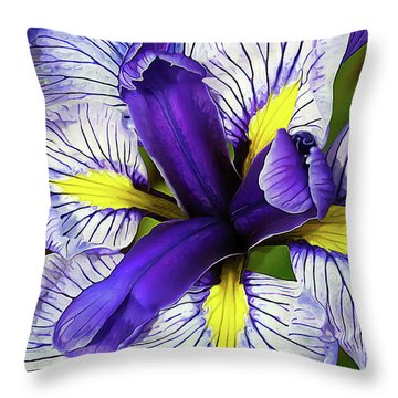 Boothbay Beauty Throw Pillow