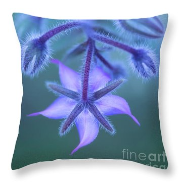 Borage Throw Pillows