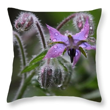 Borage Umbrella Throw Pillow