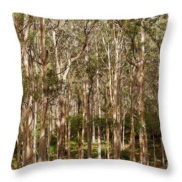 Throw Pillow featuring the photograph Boranup Forest  by Ivy Ho