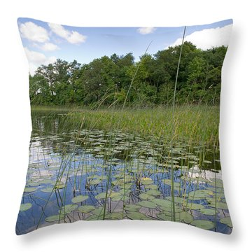 Borden Lake Lily Pads Throw Pillow