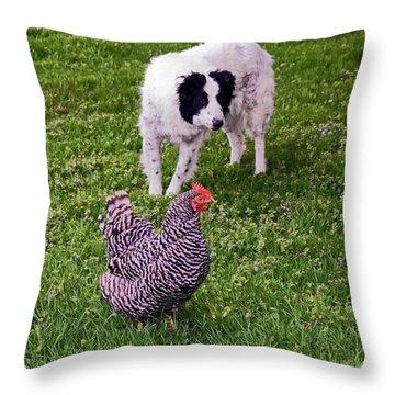 Border Collie Herding Chicken Throw Pillow