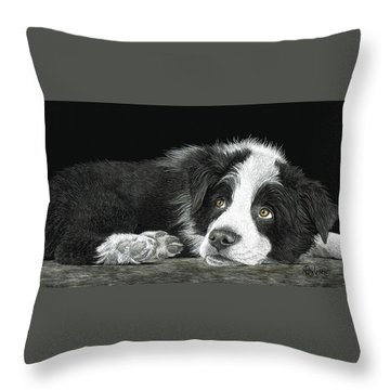 Border Collie Pup For Limited Items Throw Pillow