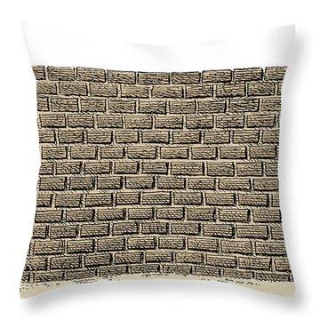 Border Wall Throw Pillow