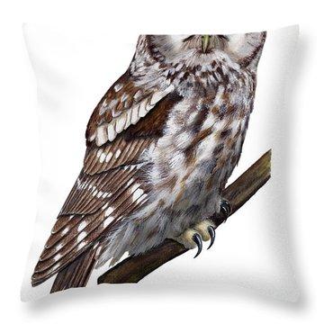 Boreal Owl Tengmalm's Owl Aegolius Funereus - Nyctale De Tengmalm - Paerluggla - Nationalpark Eifel Throw Pillow