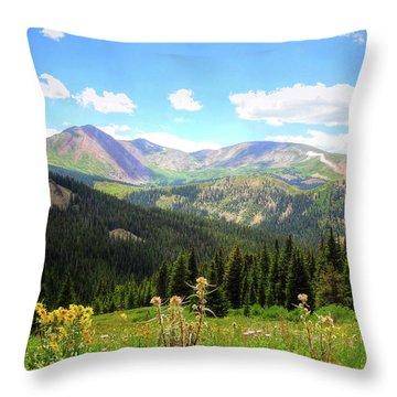 Boreas Pass Colorado Throw Pillow