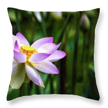 Throw Pillow featuring the photograph Born Of The Water by Edward Kreis