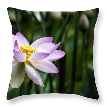 Born Of The Water Original Throw Pillow