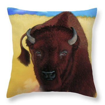 Born Of Thunder Throw Pillow by Tracy L Teeter