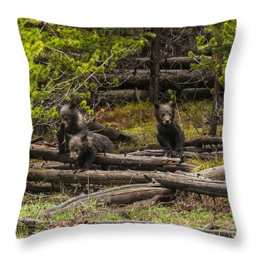 Throw Pillow featuring the photograph Born To Be Wild by Yeates Photography