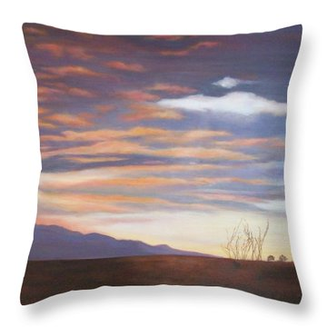 Borrego After The Storm Throw Pillow