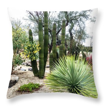 Borrego Botanical Garden Throw Pillow
