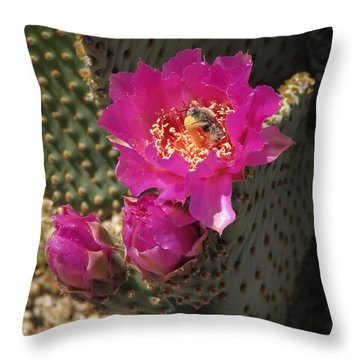 Borrego Springs Bloom 6 Throw Pillow