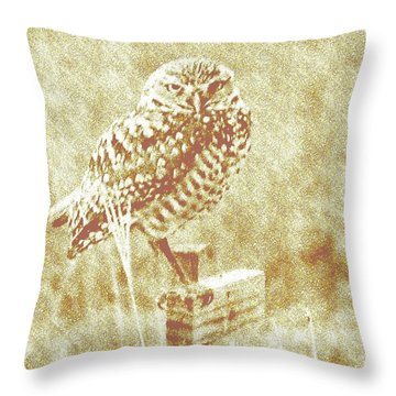 Borrowing Owl Throw Pillow by Timothy Lowry