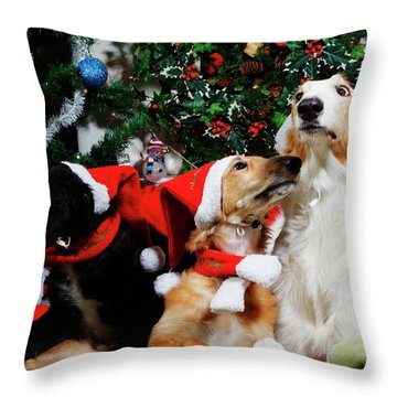 Borzoi Hounds Dressed As Father Christmas Throw Pillow by Christian Lagereek