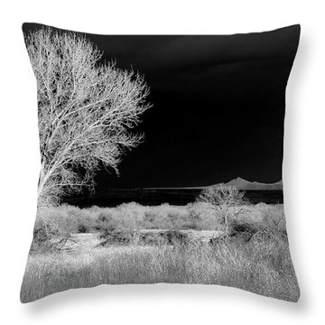 Bosque Del Apache - Infrared Throw Pillow