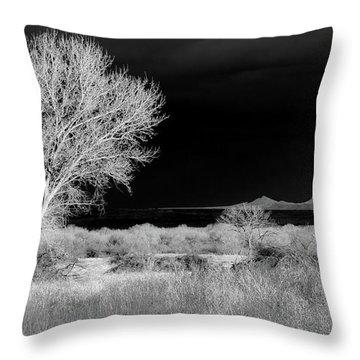 Bosque Del Apache - Infrared Throw Pillow