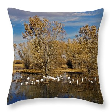 Bosque Del Apache Throw Pillow by Kurt Van Wagner