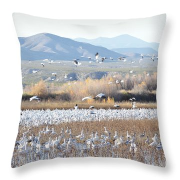 Bosque Del Apache Snow Geese Landscape Throw Pillow by Andrea Hazel Ihlefeld