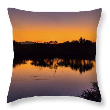 Bosque Del Apache Sunset Throw Pillow