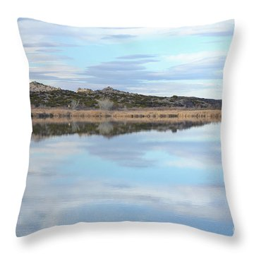 Throw Pillow featuring the photograph Bosque Desert Lake by Andrea Hazel Ihlefeld