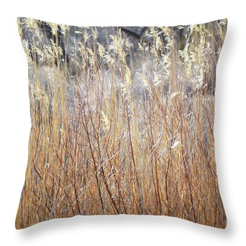 Throw Pillow featuring the photograph Bosque Desert Willows by Andrea Hazel Ihlefeld