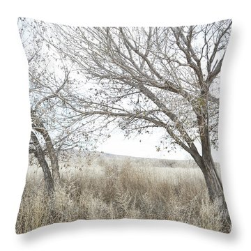 Throw Pillow featuring the photograph Bosque Dreamy Tree Field by Andrea Hazel Ihlefeld