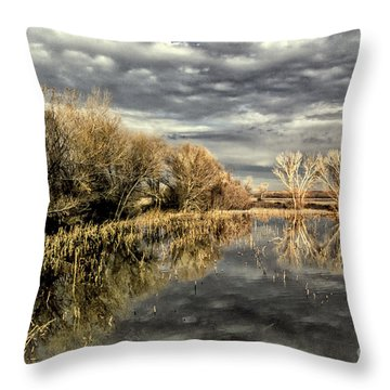Bosque Dusk Throw Pillow