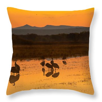 Bosque Sunrise Throw Pillow by Alan Vance Ley