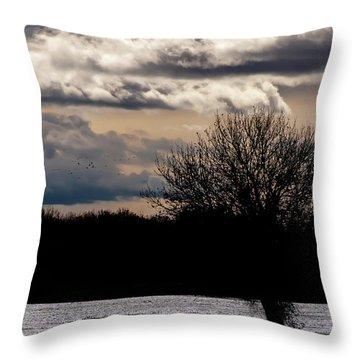 Throw Pillow featuring the photograph Bosque Sunset by Britt Runyon