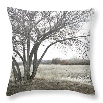 Throw Pillow featuring the photograph Bosque Tree Snow Geese by Andrea Hazel Ihlefeld