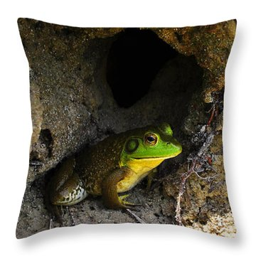 Throw Pillow featuring the photograph Boss Frog by Al Powell Photography USA