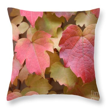 Boston Ivy Turning Throw Pillow