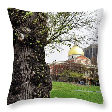 Boston Ma State House From Afar Throw Pillow