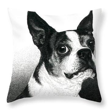 Boston Style Throw Pillow