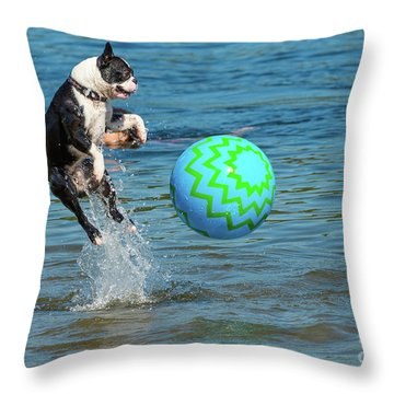 Boston Terrier High Jump Throw Pillow