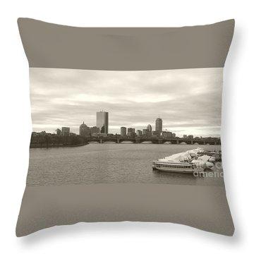 Boston View Throw Pillow